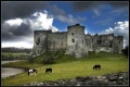 Carew Castle home of Gerald de Windsor and Nest of Deheubarth  source of Carew family